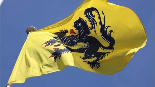 Vlaamse leeuw foto: hln.be